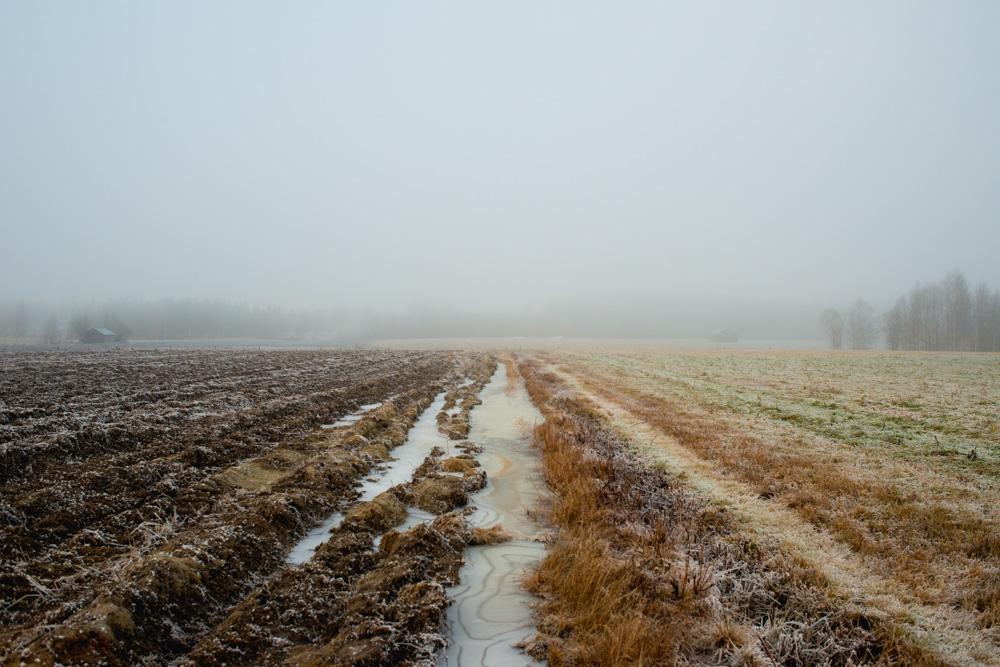 spolandska-landskap-04