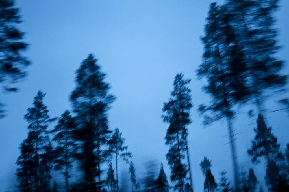 Västerbotten 2011