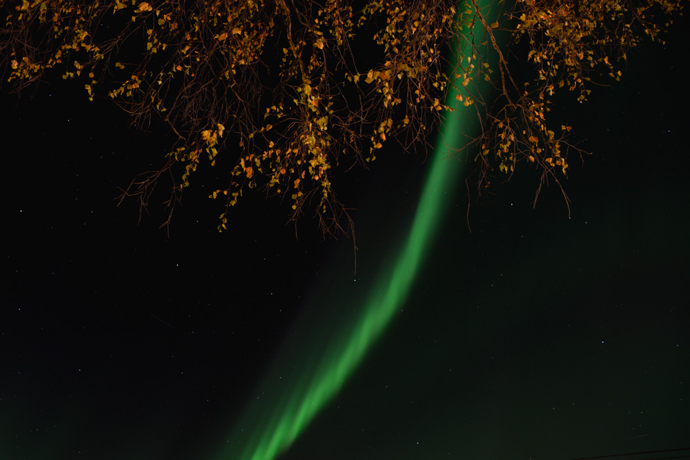 northern-lights-2